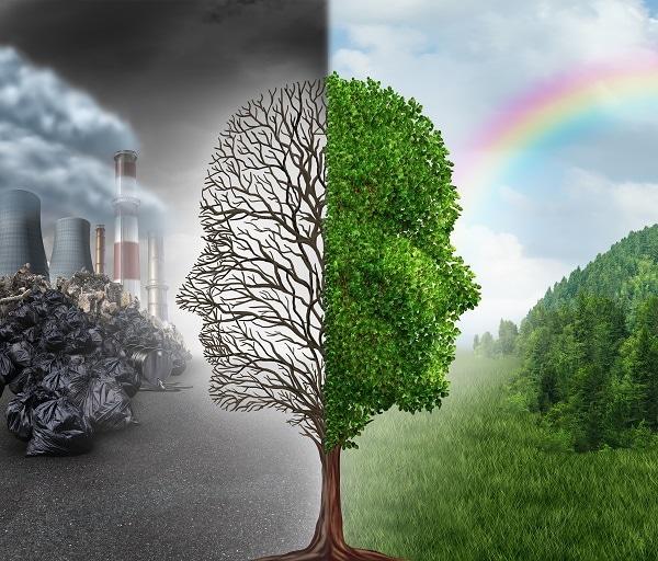 Bảo vệ môi trường nhìn từ góc độ của dân văn phòng